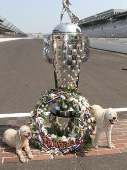 Winners photoshoot: the dogs of Dario Franchitti, Target Chip Ganassi Racing Honda
