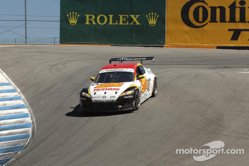 #43 Team Sahlen Theracesite.com Mazda RX-8: Dane Cameron, Wayne Nonnamaker