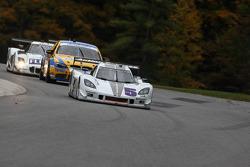# 5 Action Express Racing Chevrolet Corvette DP: Terry Borcheller, David Donohue, Brian Frisselle