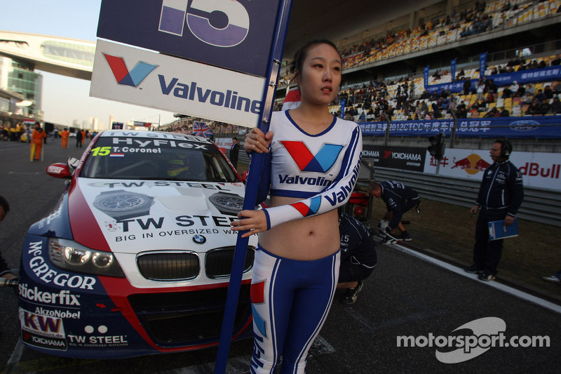 Grid Girl of Tom Coronel, BMW 320 TC, ROAL Motorsport