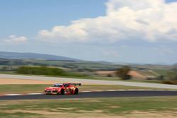 #6 Rod Salmon Audi R8 LMS: Rod Salmon, Craig Lowndes, Warren Luff