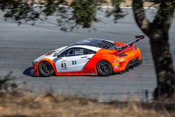 #43 RealTime Racing Acura NSX GT3: Ryan Eversley, Dane Cameron, Tom Dyer