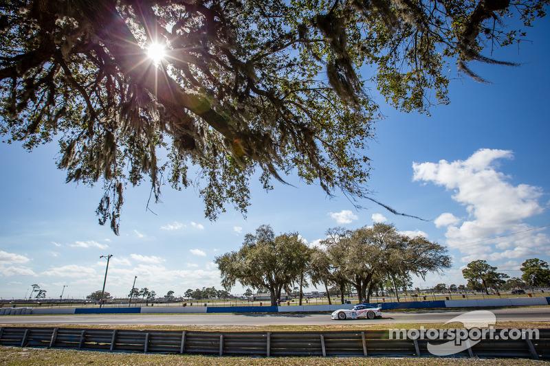 #33 Riley Motorsports SRT 蝰蛇 GT3-R: 本·基廷, 杰伦·布勒克莫伦, 塞巴斯蒂安·布勒克莫伦, 马克·古森斯