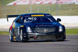 #8 凯迪拉克 Racing CTS-V.R: 安迪·皮尔格林