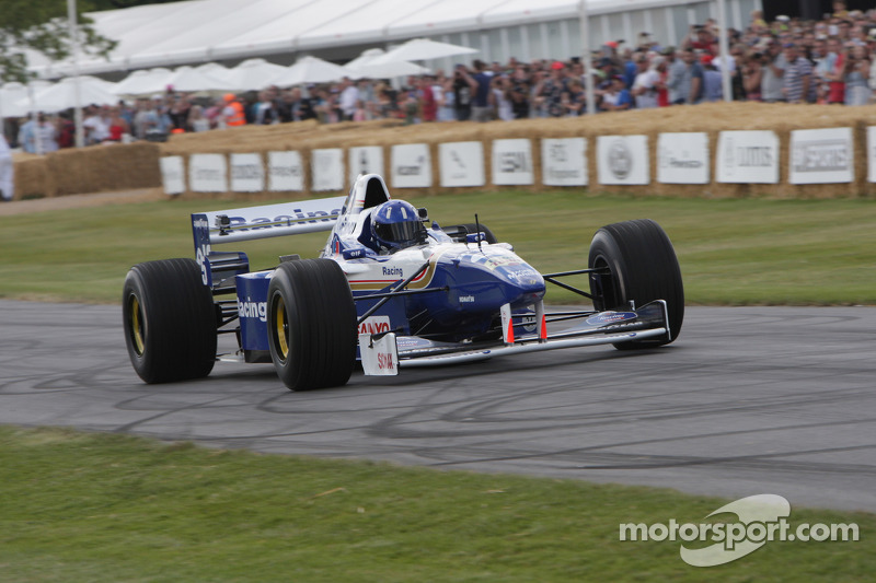 Williams FW18 - Damon Hill