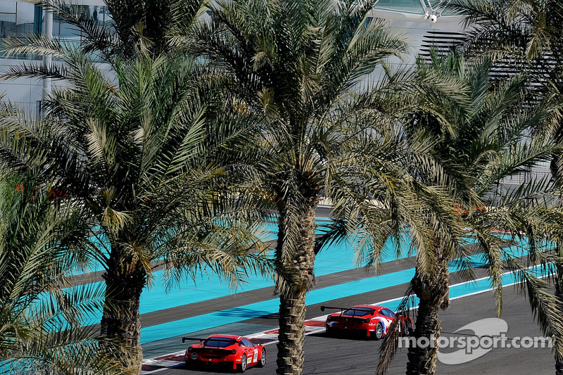 Ferrari race action