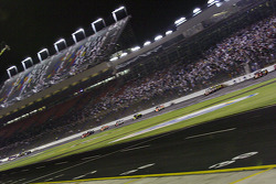 The pack goes down the front straight