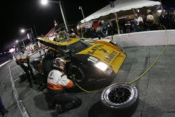 Pitstop for #19 Playboy/Uniden Racing Ford Crawford: Memo Gidley, Michael McDowell, Alex Barron