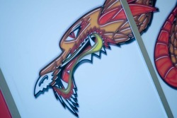 Dragon dans le garage de l'équipe de Chine