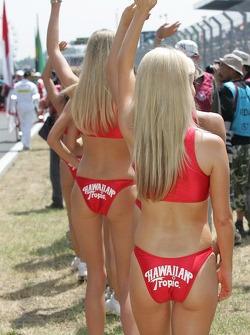 Hawaiian Tropic Girls