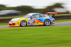 Nick Foster, Dylan Thomas, Porsche 911 GT3 Kupası