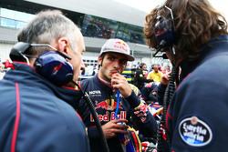 Carlos Sainz jr., Scuderia Toro Rosso, in der Startaufstellung