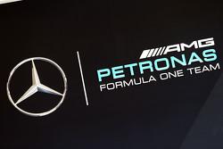 Mercedes AMG F1 logo