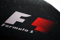 Мокры логотип F1