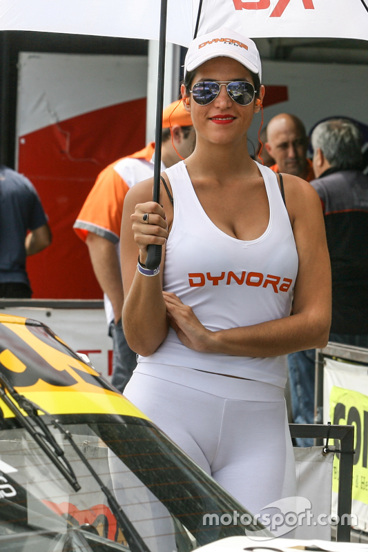 Paddock Girls Argentina Dynora
