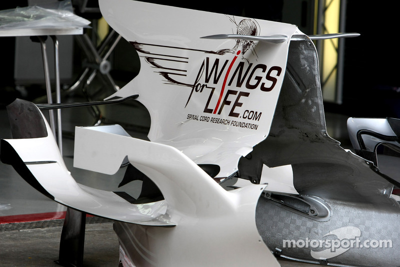 Red Bull Racing, David Coulthard, Wings for life Livery