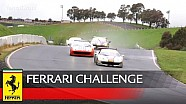Ferrari Challenge NA – Re-live the emotions of Sonoma