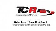 LIVE - La Course 1 de TCR à Oschersleben