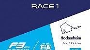 28th race of the 2016 season / 1st race at Hockenheim