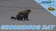 It's 'Groundhog Day' In Michigan