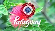 Descubre Paraguay - Dakar 2017