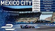 Mexico City ePrix - Antrenman - Sıralama Turları - Yarış