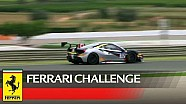 Ferrari Challenge Europe , Valencia 2017 - Coppa Shell race 2
