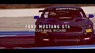Ford Mustang GT4 - FFSA European series - Circuit Paul Ricard 2017