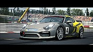 Porsche in racing simulation RaceRoom