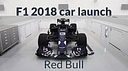 F1 2018 Car Launches: Red Bull