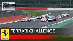 Ferrari Challenge Europe - Silverstone 2018, Trofeo Pirelli race 2